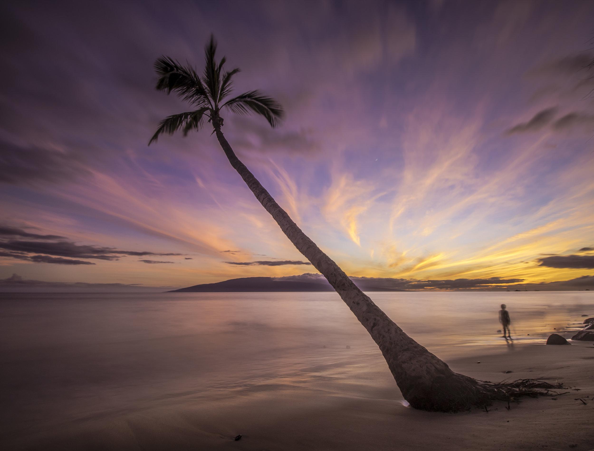 Lahaina Seascape