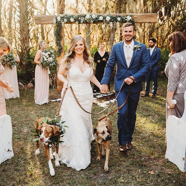 We are BOOKED SOLID from November '19 through March '20! We're thrilled for all the couples who found our little hidden gem in the woods.  Now, bring on the spring weddings, there's so much love in the air this month! 🥂🍃✨ 📷 @bohemianroadphotography