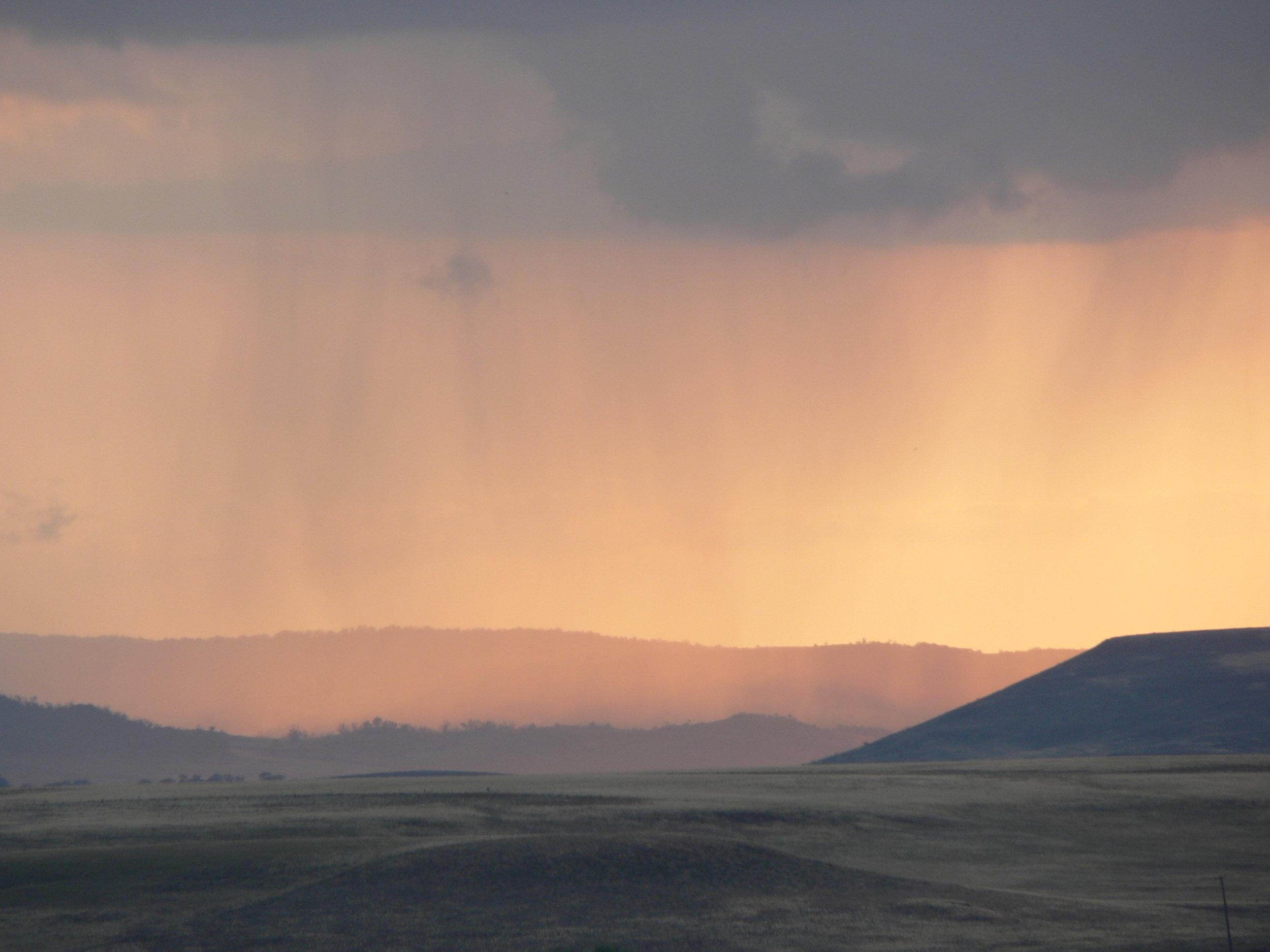 landscape 029.jpg