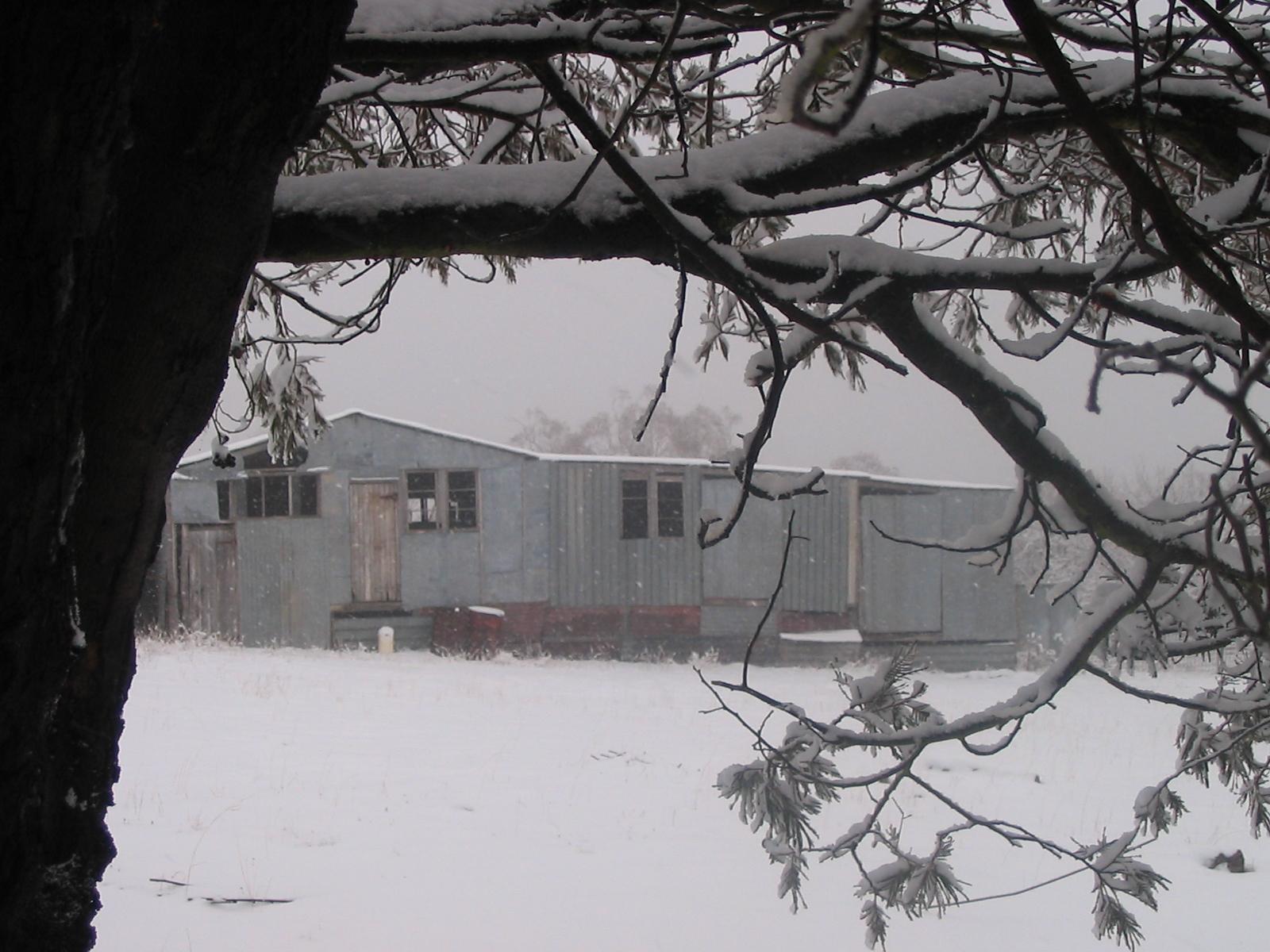 woolshed in snow.jpg