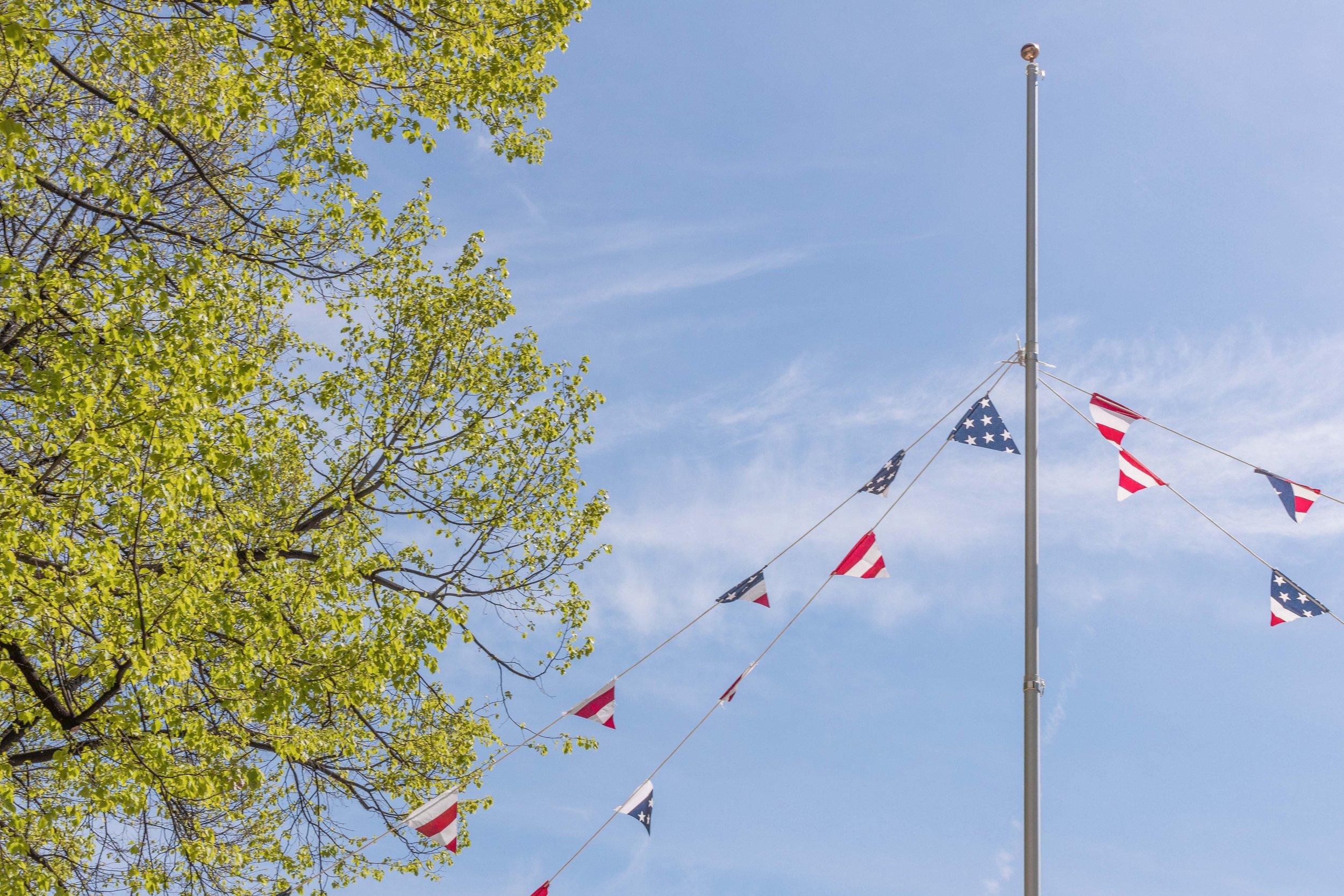 FREE, 2019  U.S. flags, wood, paint, rope, flag pole