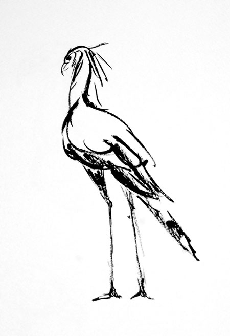 secretarybirdsumi01.jpg