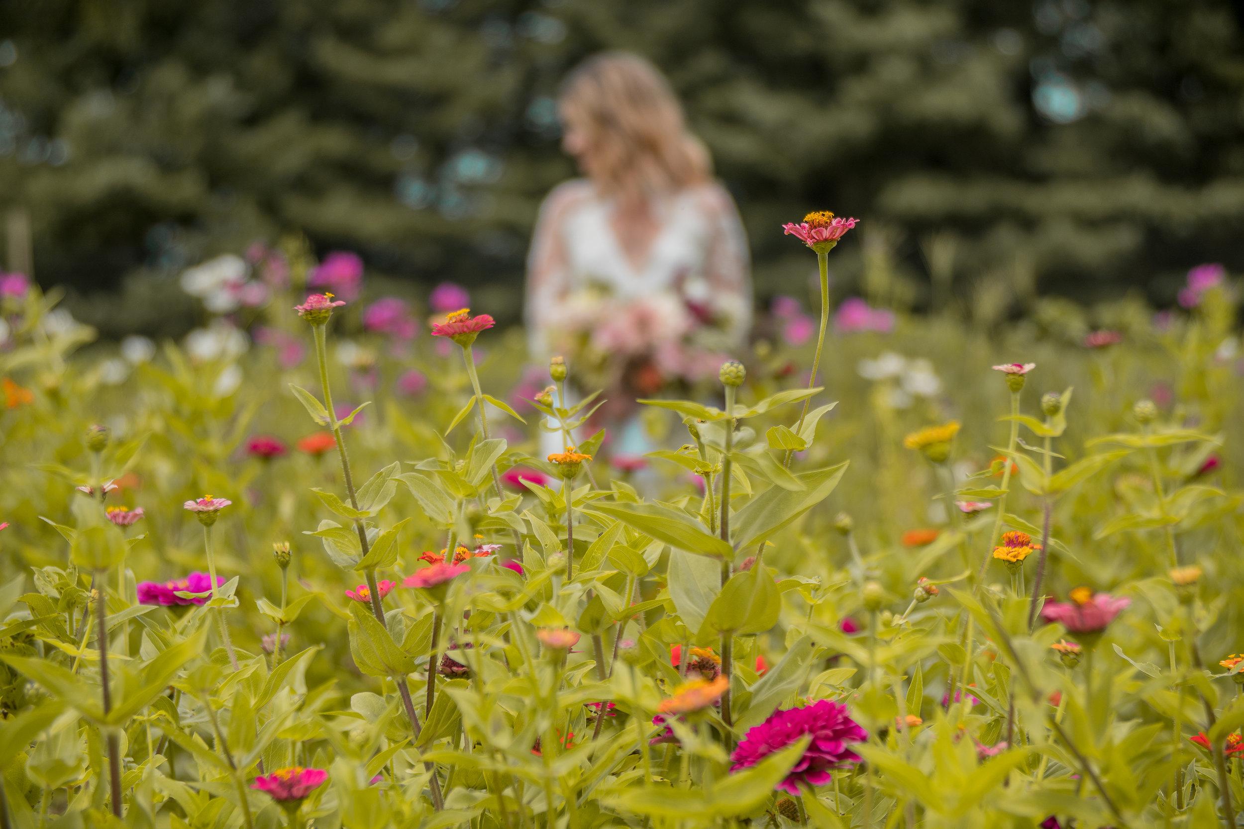 lazaro floral (15 of 47).jpg
