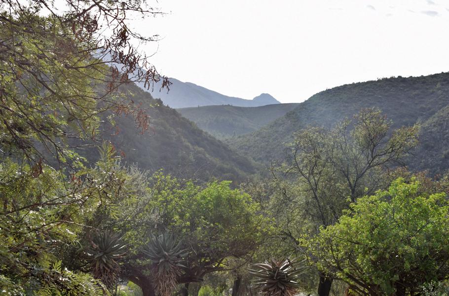 Klein Karoo view