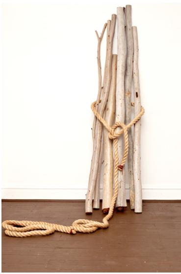 spell, 2013, seven eucalyptus trees, sisal
