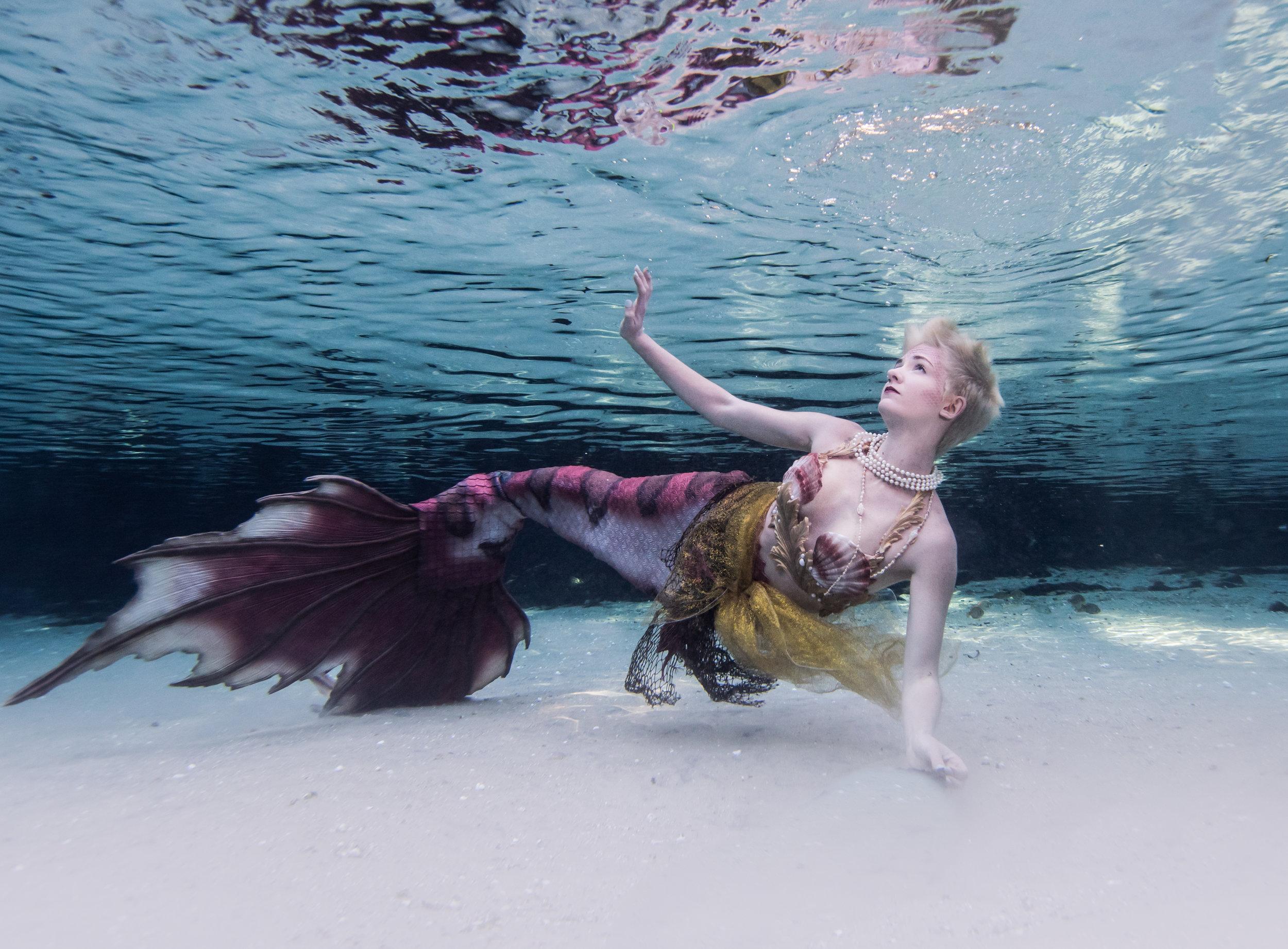 JTAqua_Underwater_SilverGlen_katelynR-4.jpg