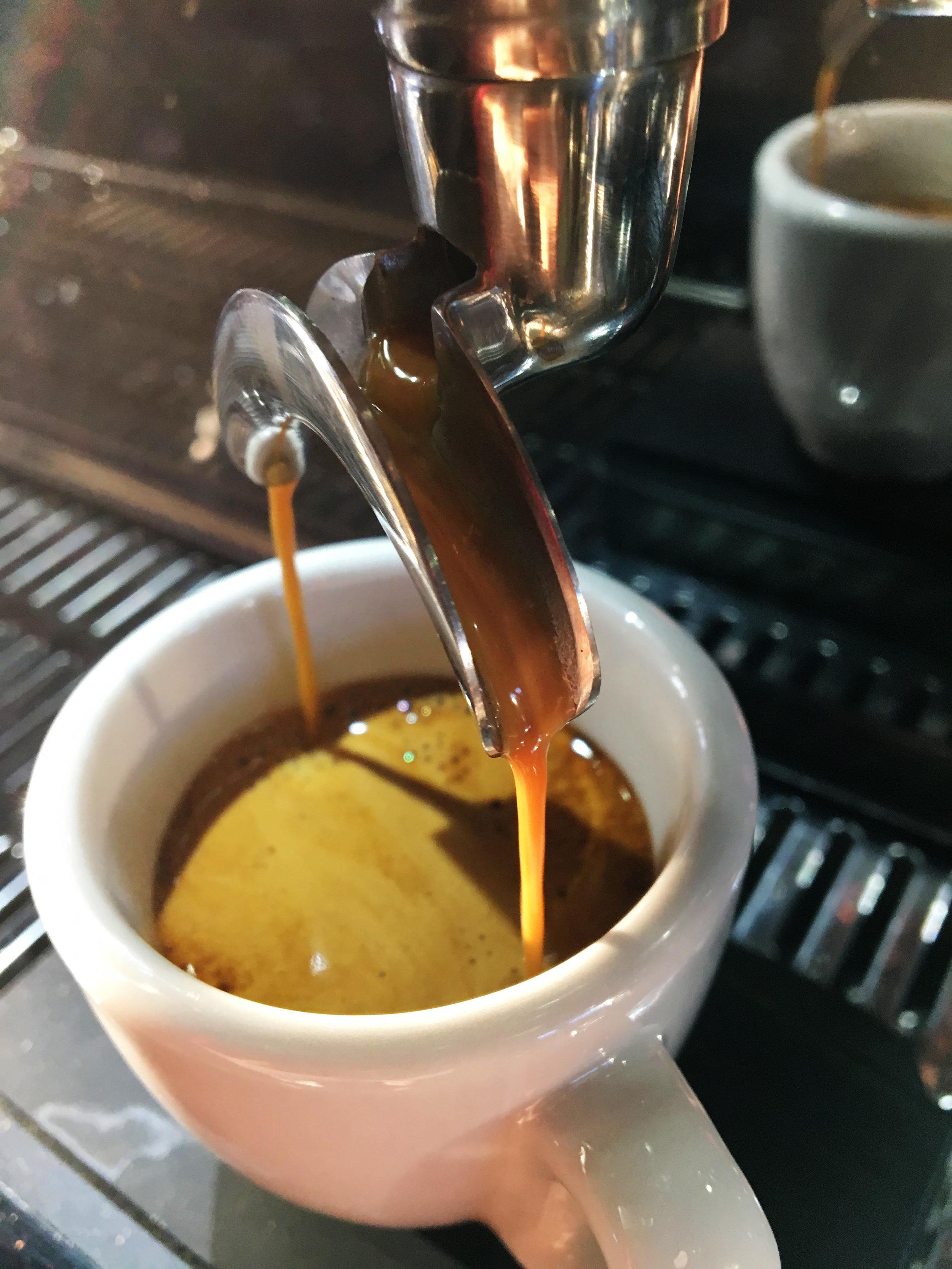 espresso pull copy.jpg