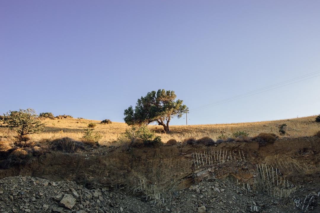michaliskoulieris-easterncrete-04.jpg