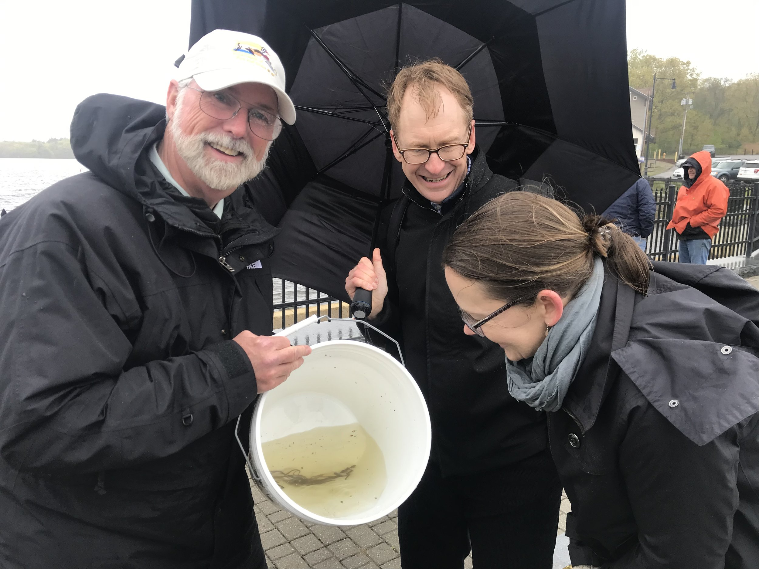 Ron Amidon, Commissioner of MA Fish and Game, with volunteers John Kilborn and Shannon Ames with Mystic eel.