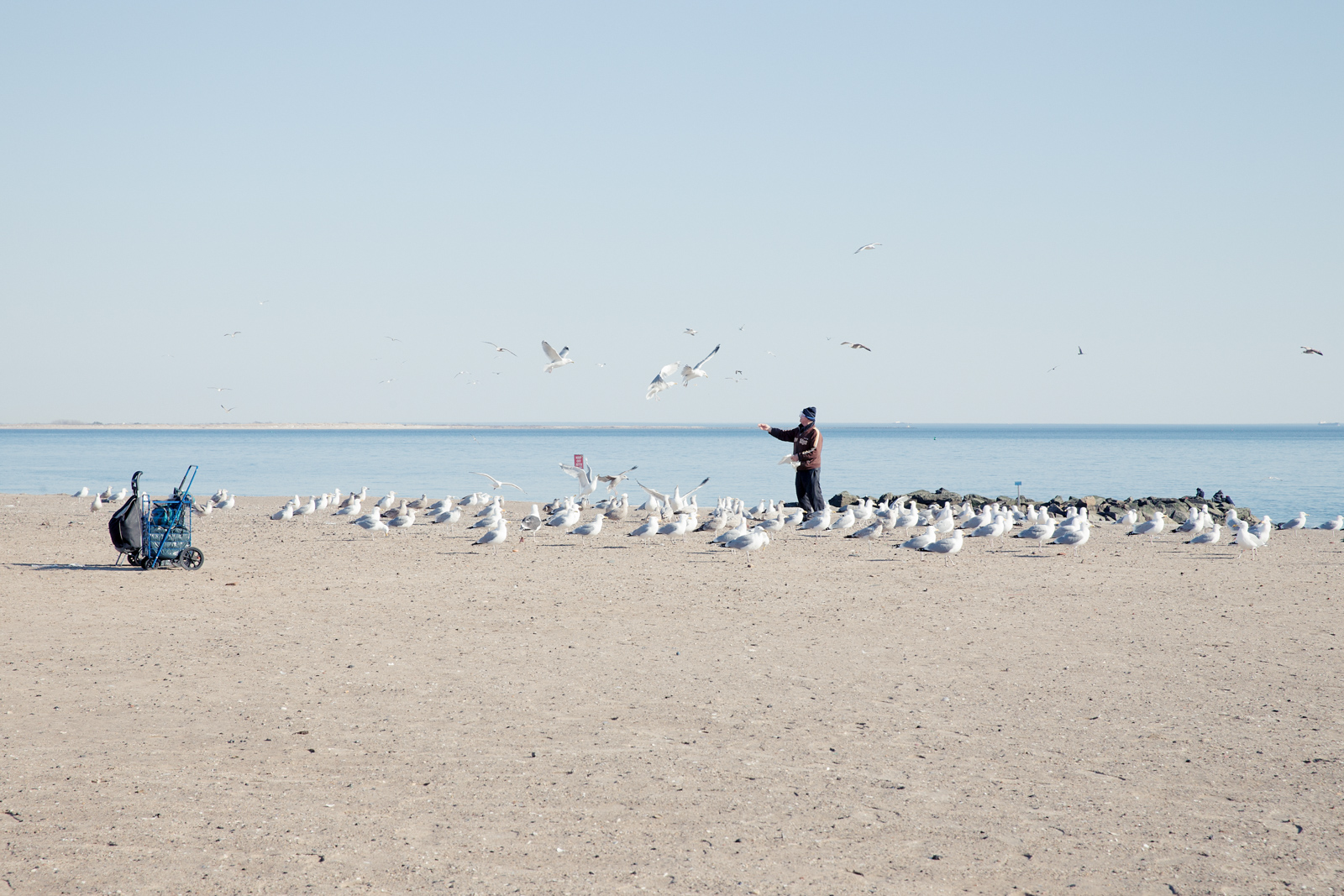 A Coney Island of the Mind-Photo Bex Wade-13.jpg