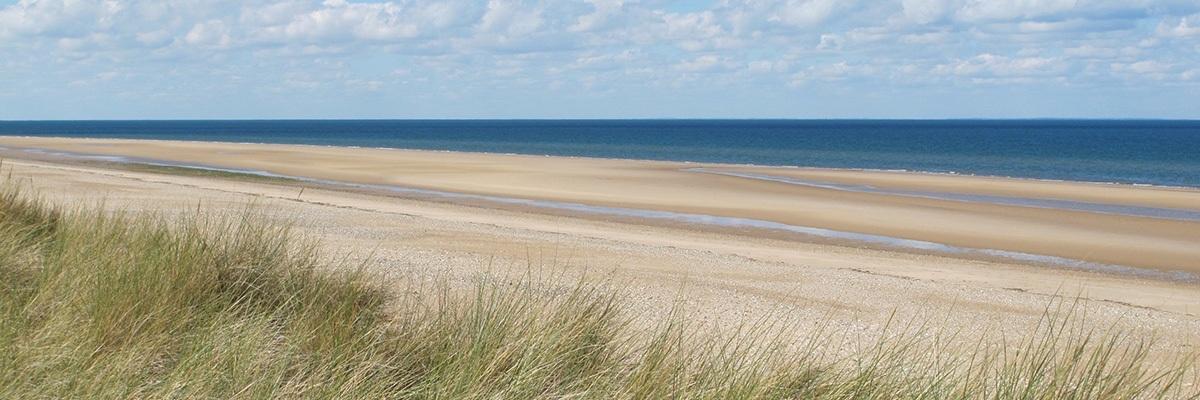 beach%2Bat%2Bbrancaster.jpg
