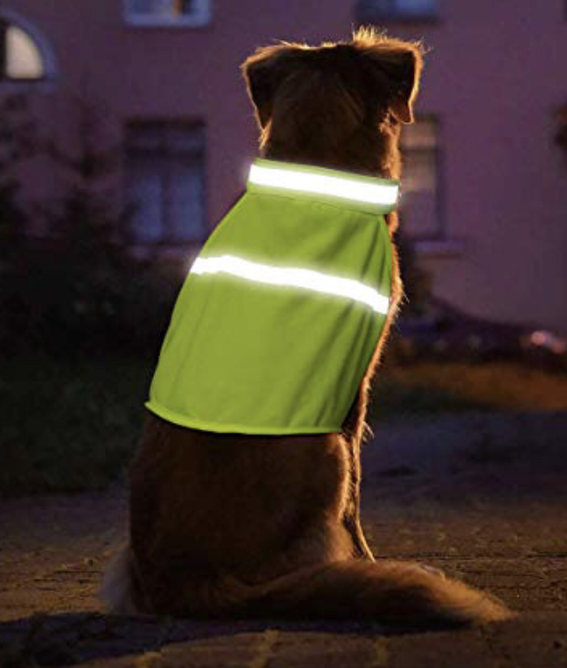 Be seen! - Due to Daylight Savings, many of us are relegated to walking our dogs in the dark. Keep yourself and your dog are safe by wearing reflective gear (clothing, leash, collar, etc) and keeping your dog close when walking on the street.
