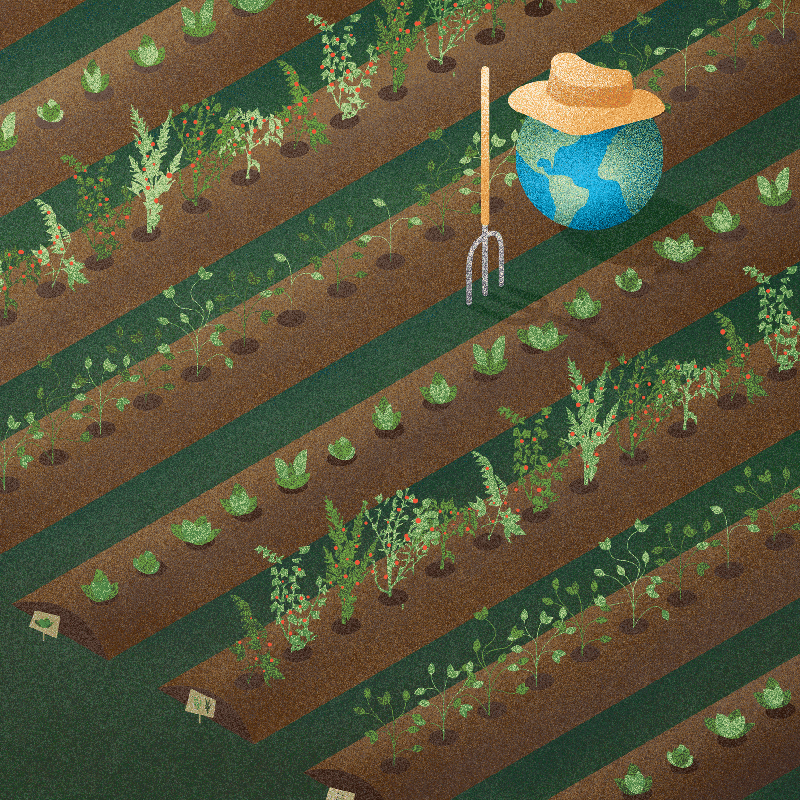 Garden-2square.png
