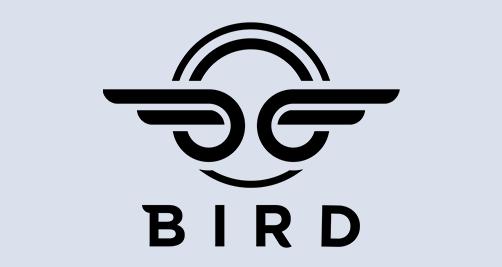 Bird Accounting