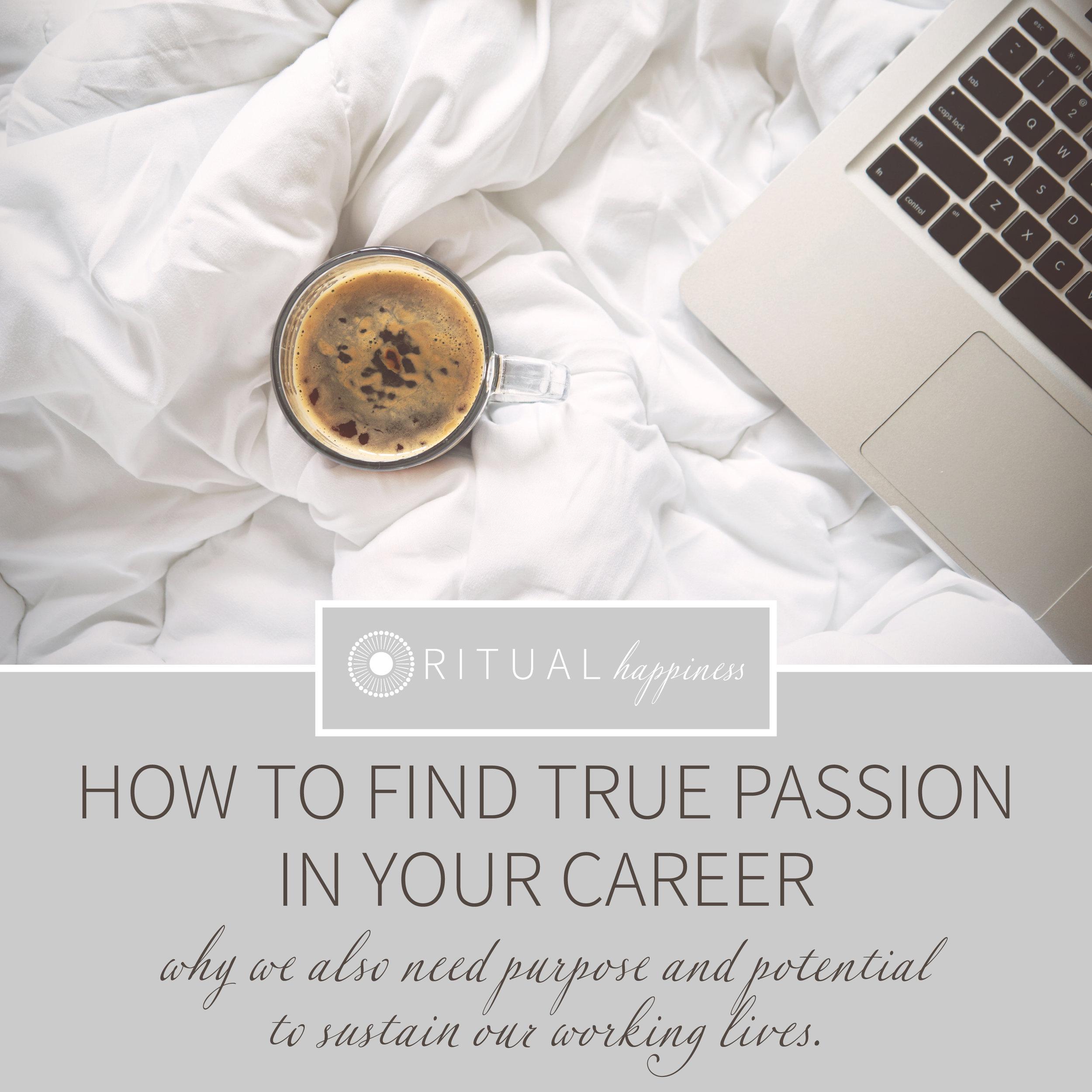 truepassion_career.jpg