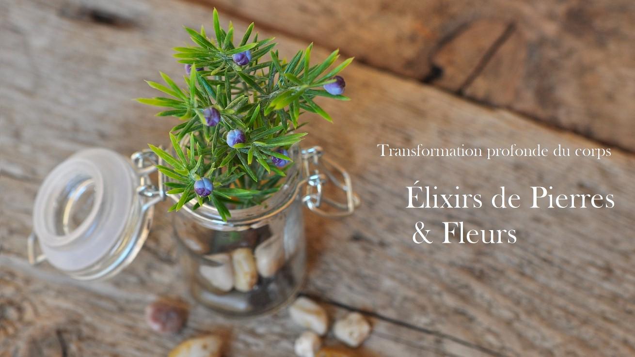 elirs-fleurs-pierres.jpg