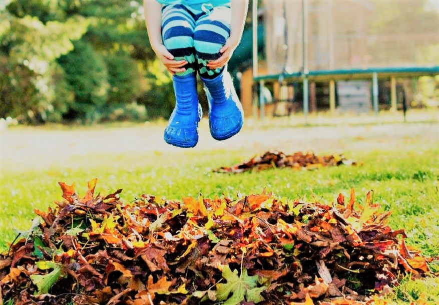 Ready to Jump into the Fall Market? - We're Ready to Help! Just reach out to us at eli@investphilly.com or by phone 215.731.4116 to get started!