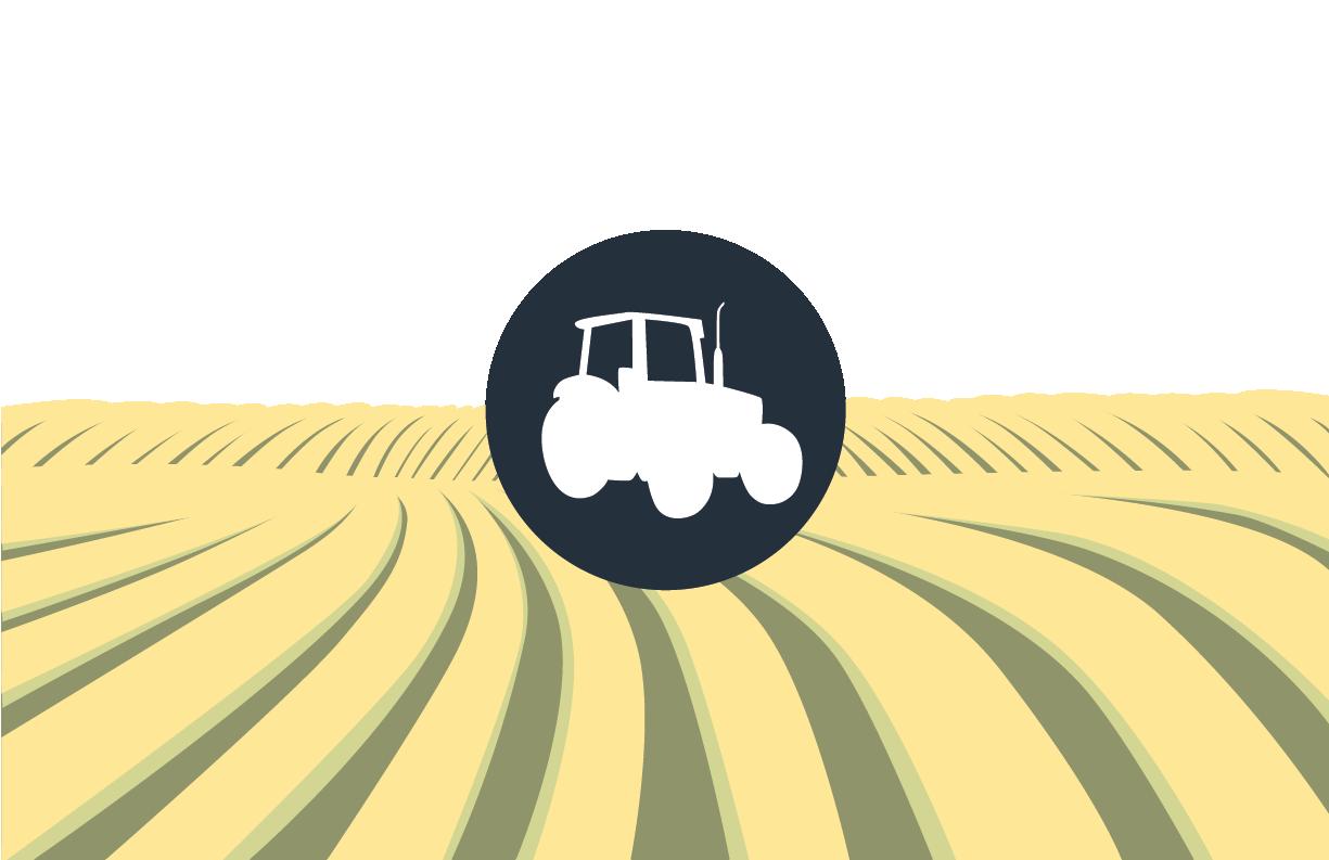 farm_illustration.png