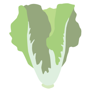 locals_market_icon_lettuce.png