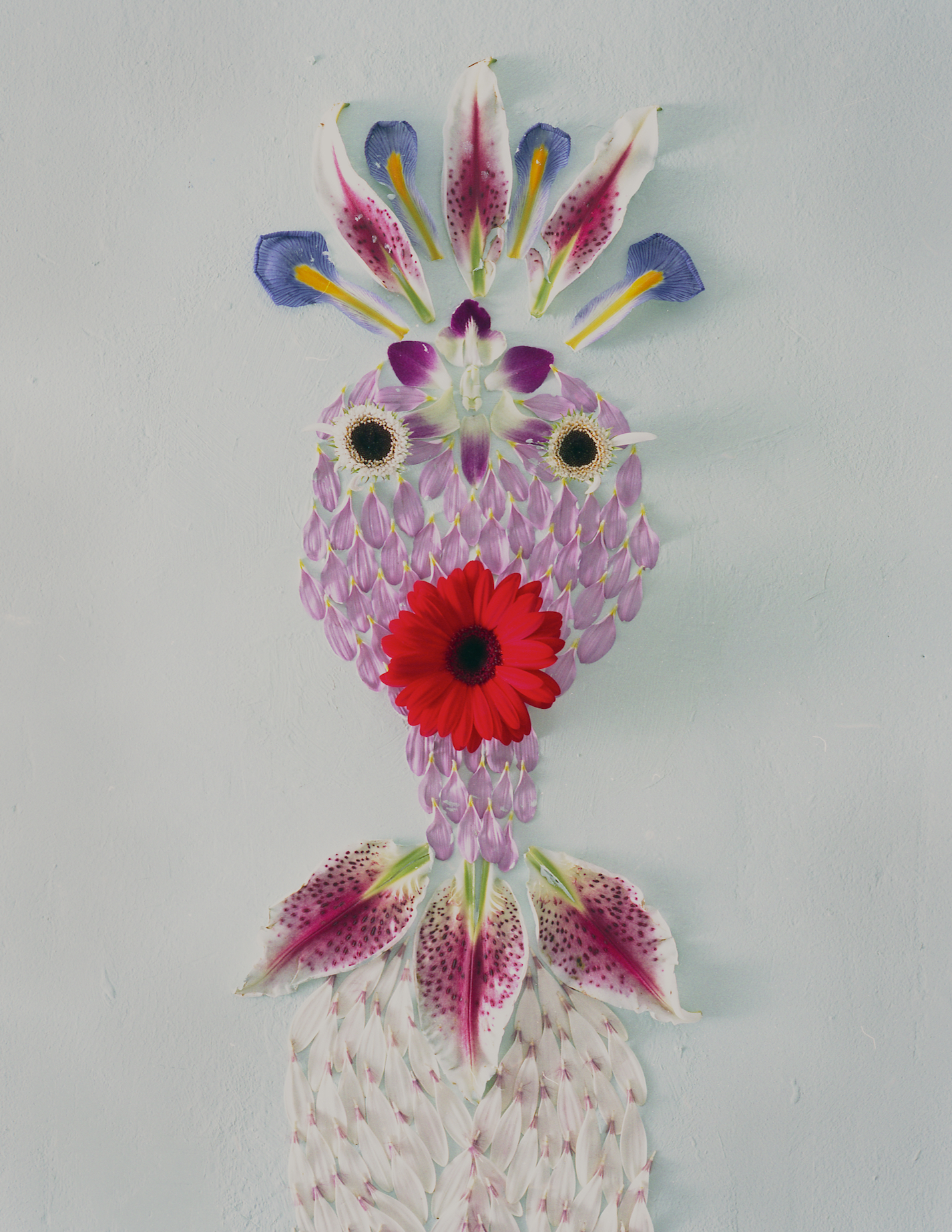 Where and when was your first public show? - My first time exhibiting work publicly was in 2000, with Ralph Pucci. We showed photographs of drawings I had made out of flower petals, stems and leaves. These drawings imagined new species of flowers, and fantastical petal creatures were assembled into their own little stories.