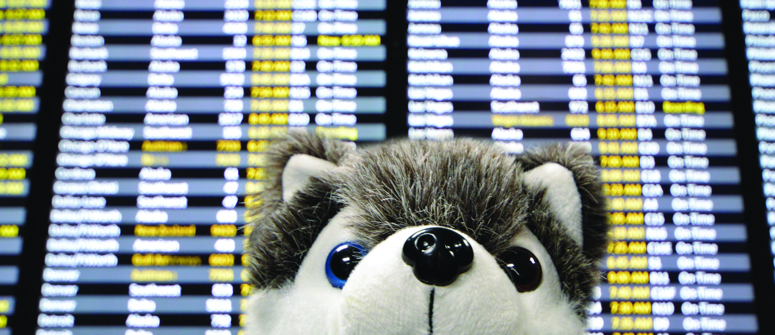 Where's Dash Going Departures 3.jpg