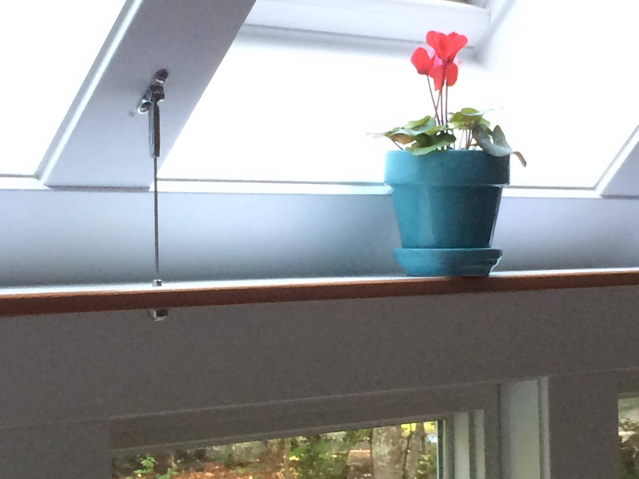 window shelf.jpg