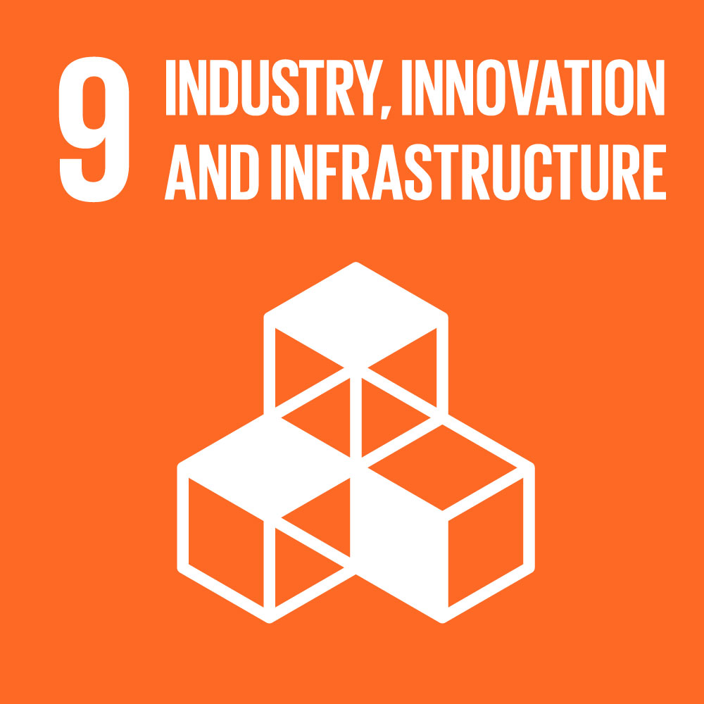 #9 Industry, innovation and infastructure.jpg