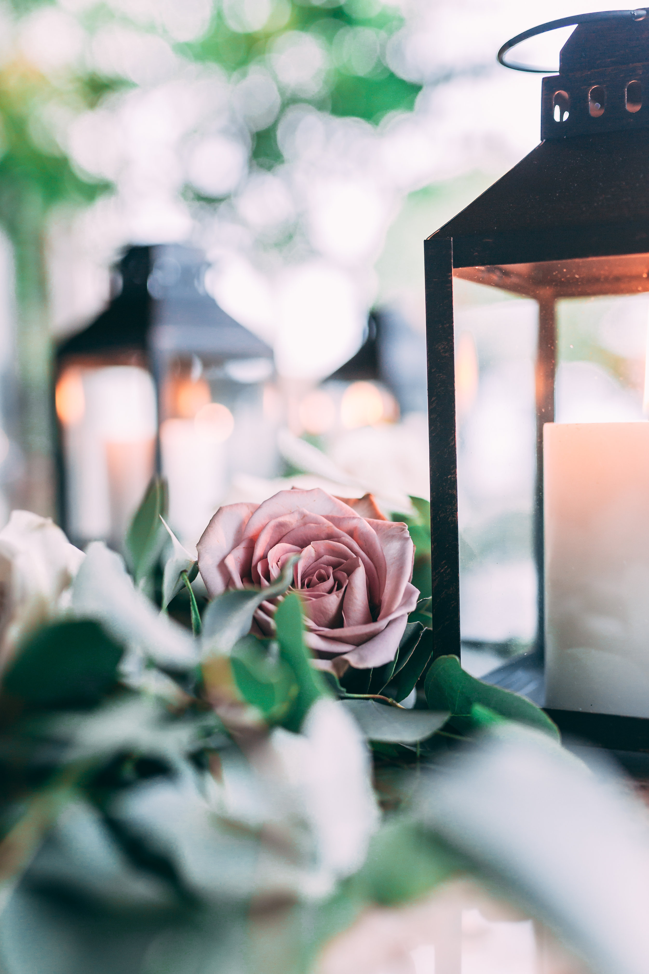 Caramel_Kitchen_Wedding_Lehigh_Valley_Wedding-7581.jpg
