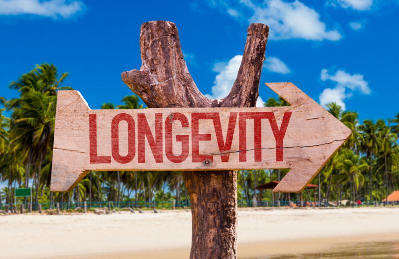 Alimentar-se bem pode ser um dos segredos para uma vida longa