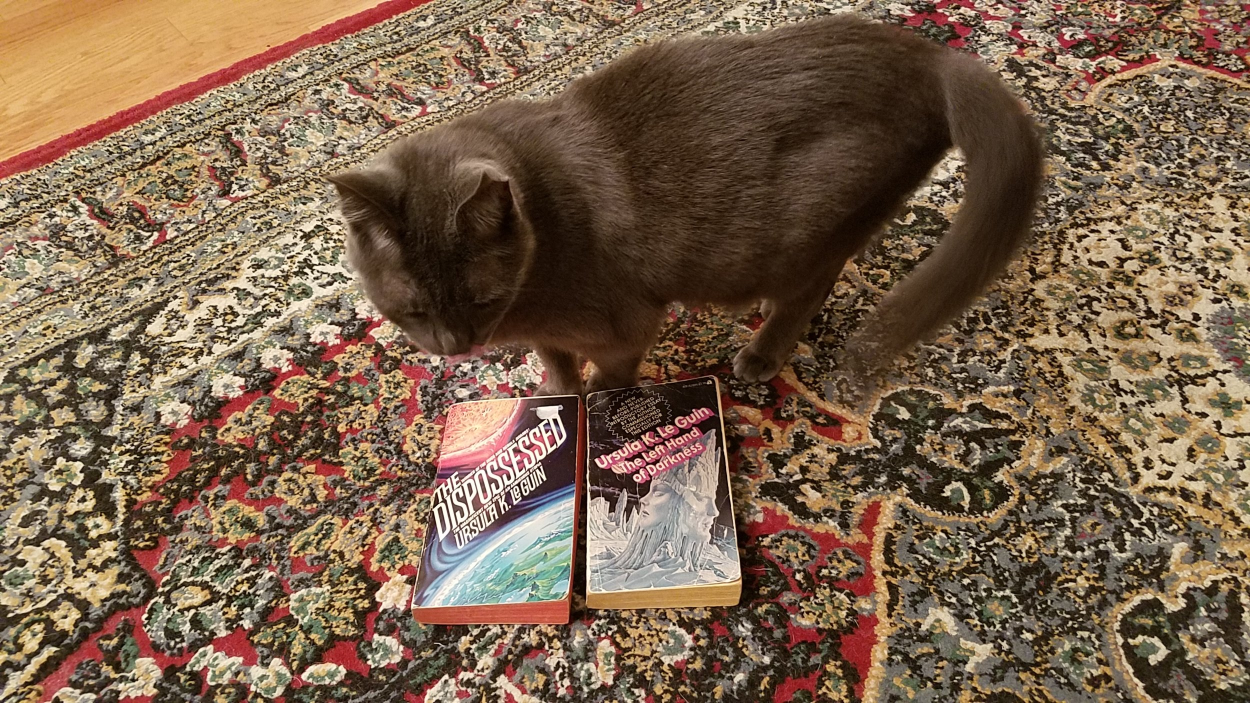Ursula K. Le Guin's cross-species appeal.