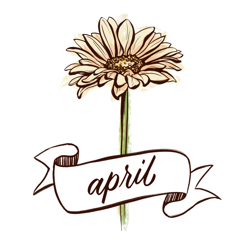 Daisy flower illustration with hand lettering