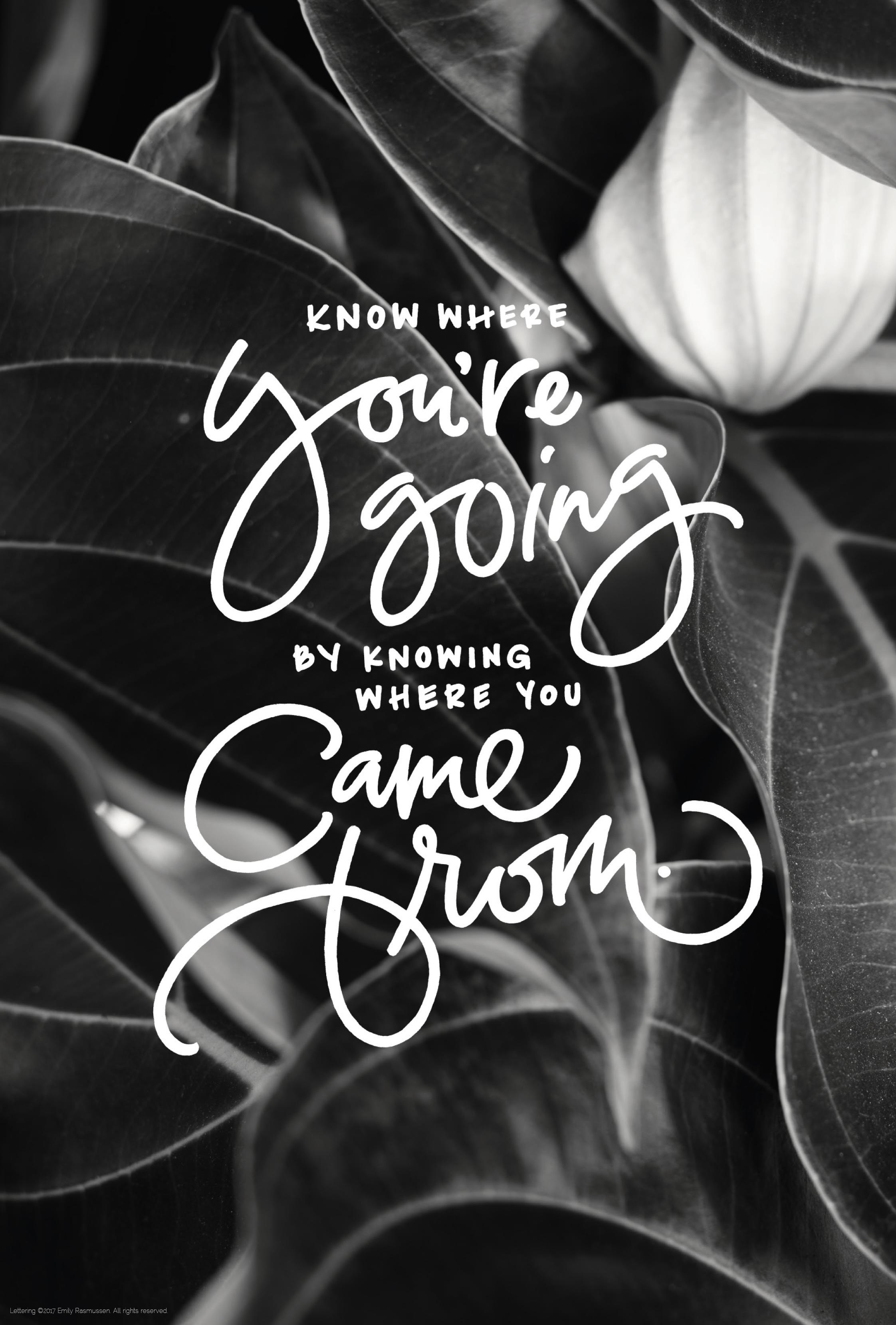 Hand-lettered quote in white over black and white plant photography