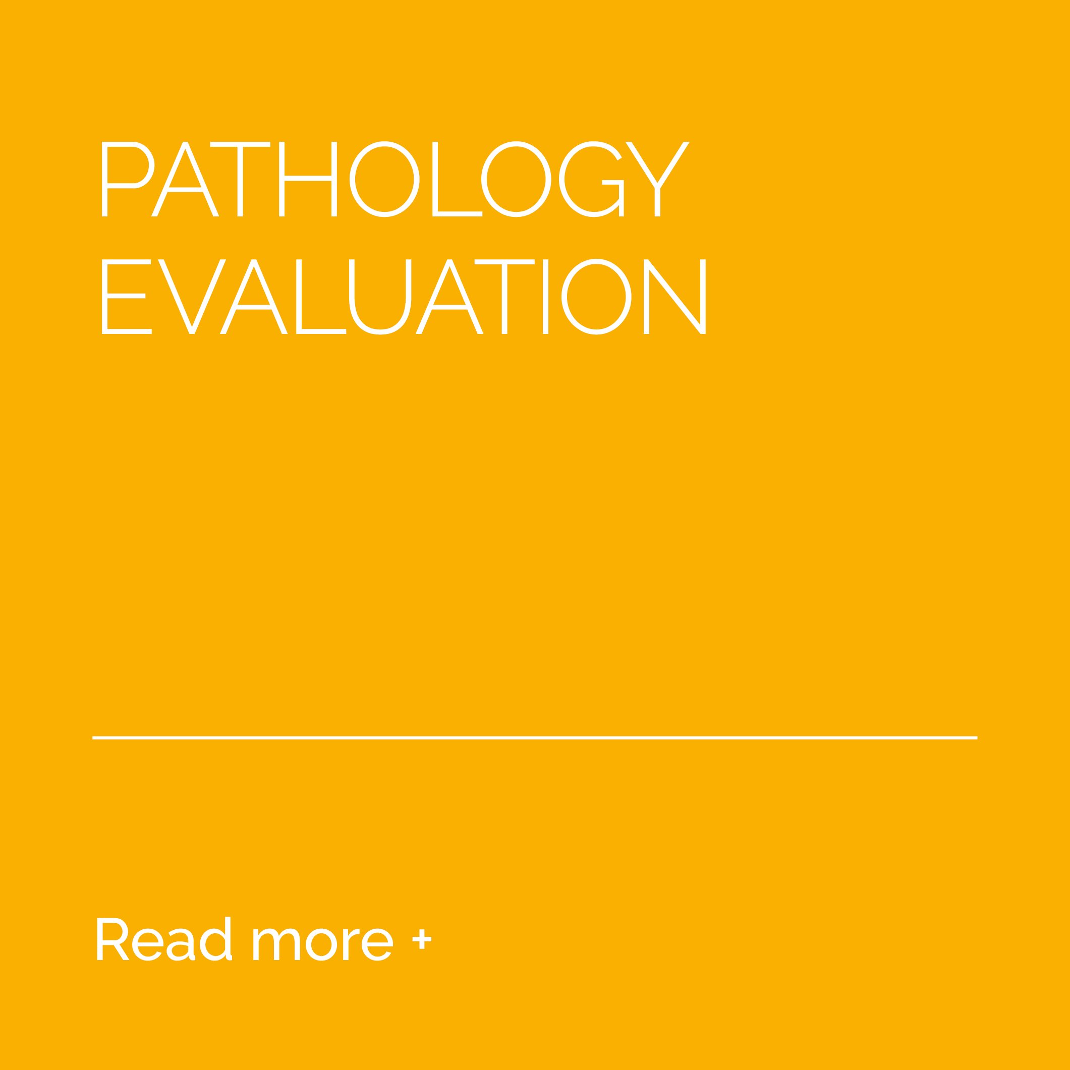 6-Services-Pathology-Evaluation-BEFORE.png