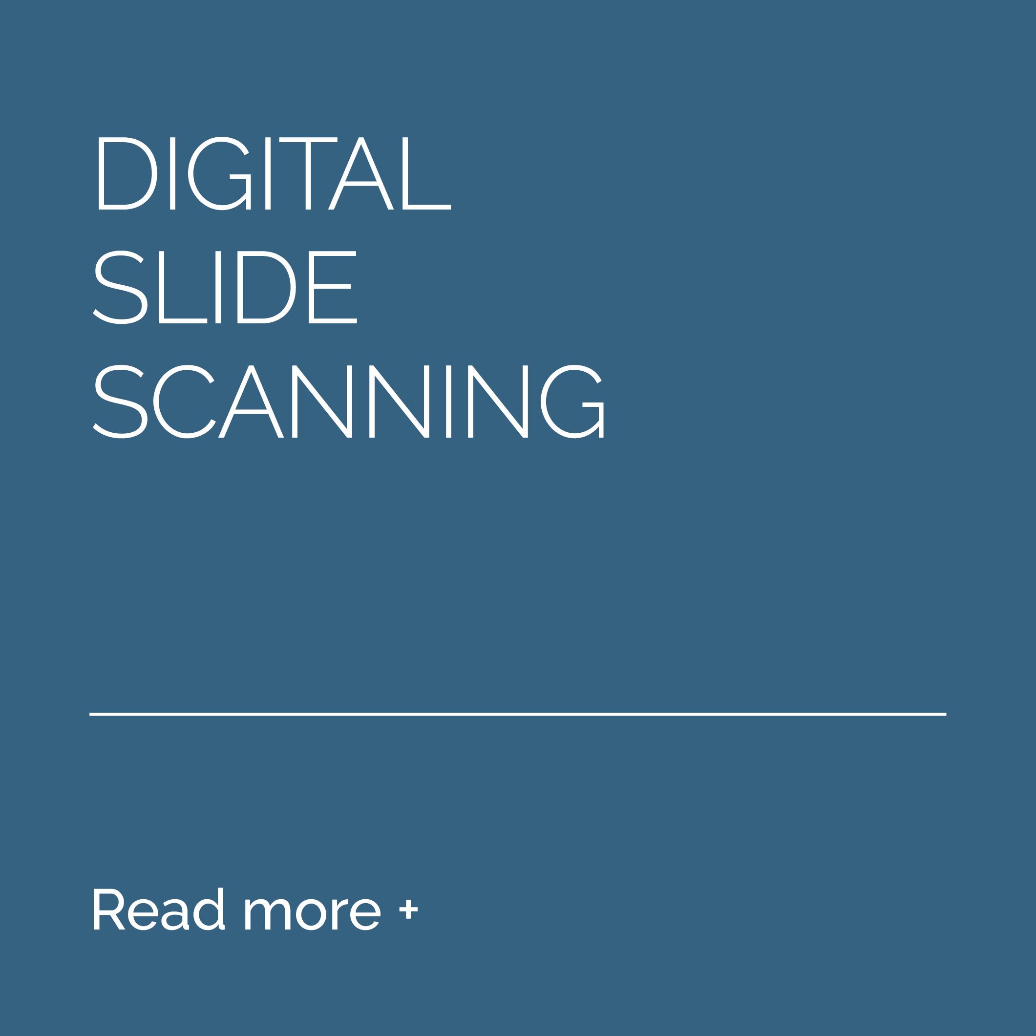 8-Services-Digital-Slide-Scanning-BEFORE.png