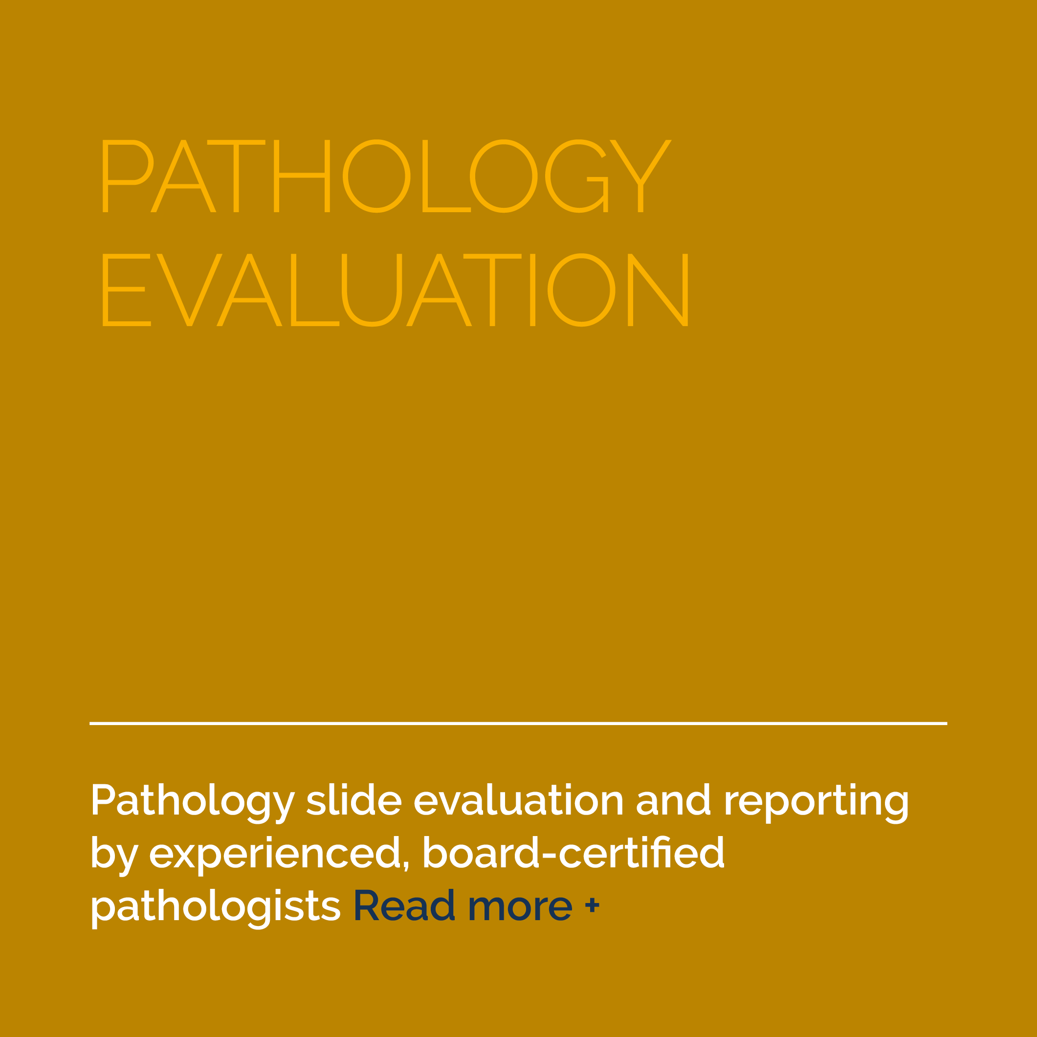 6-Services-Pathology-Evaluation-AFTER.png