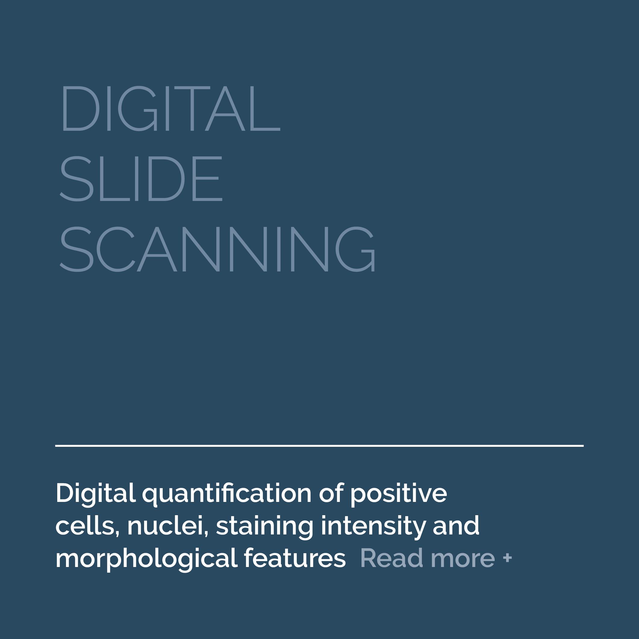 8-Services-Digital-Slide-Scanning-AFTER.png