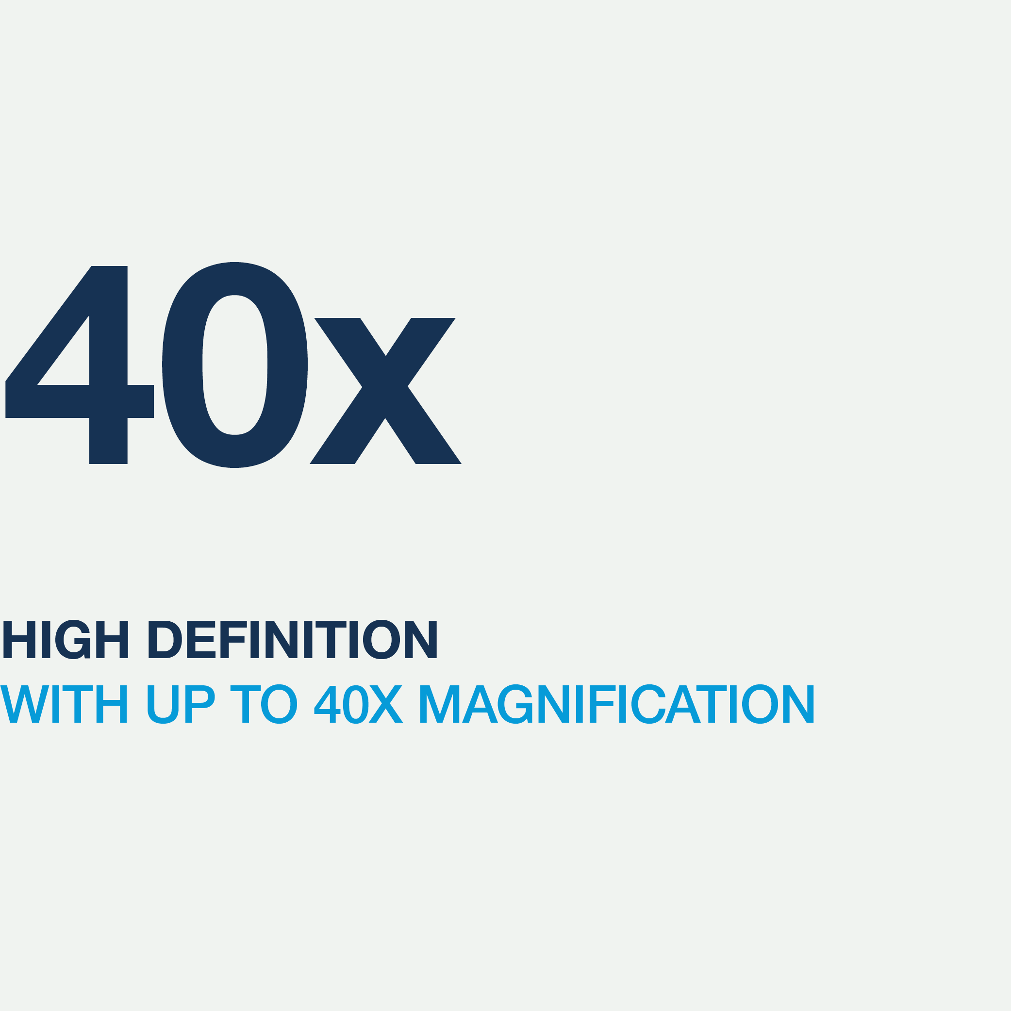 Services-40x-magnification-icon.png