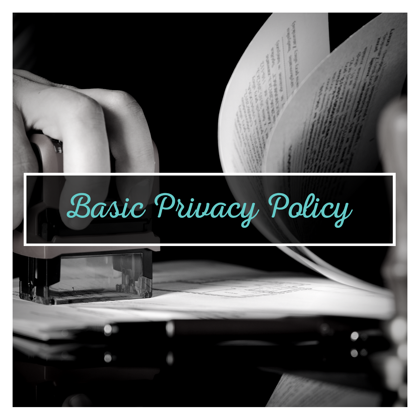 $275 plus GST - A basic templated Privacy Policy to get you started.