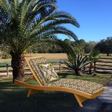 Chaise at La finca palms.jpg