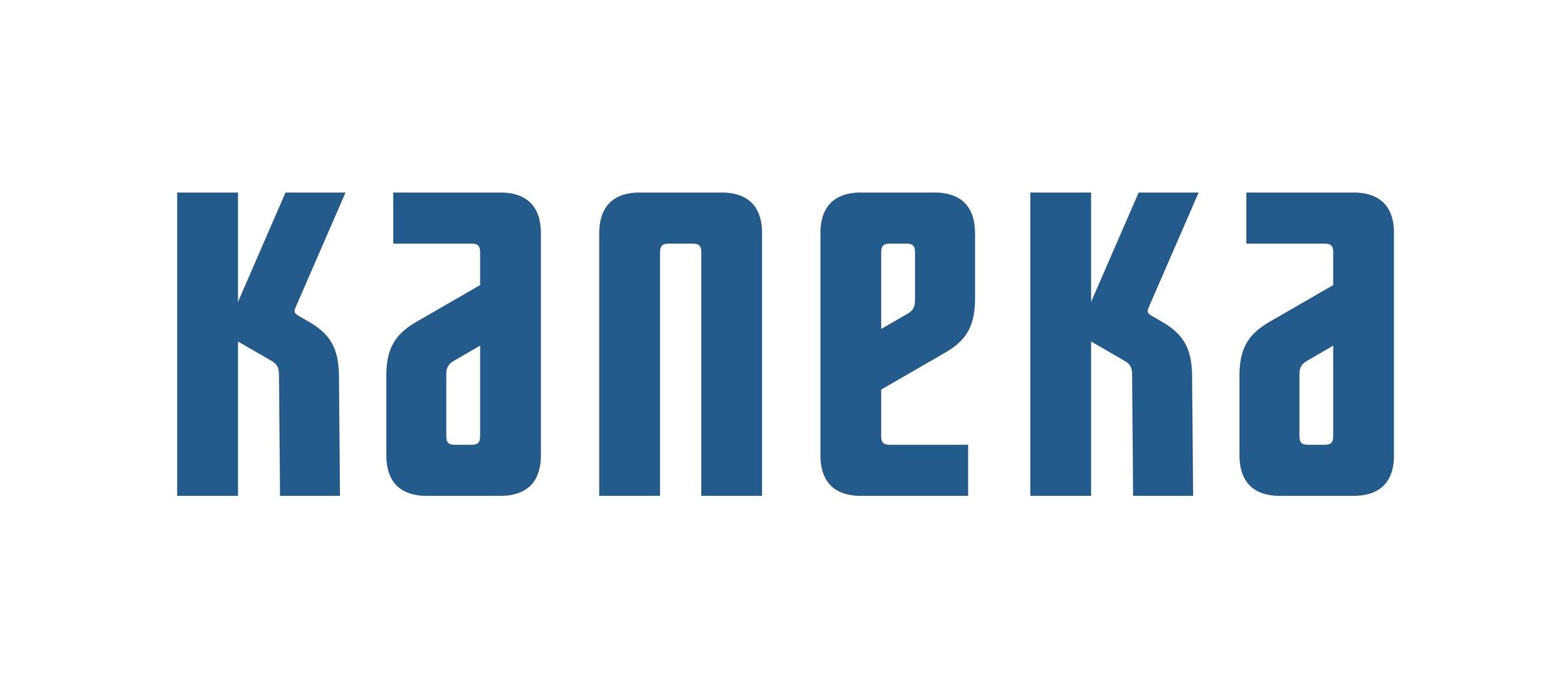 KANEKA(青)2017-border.jpg