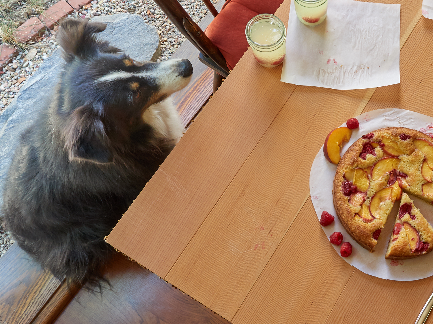 Riley is pretty sure he likes raspberry peach cake... but if we give him some, he could be certain.