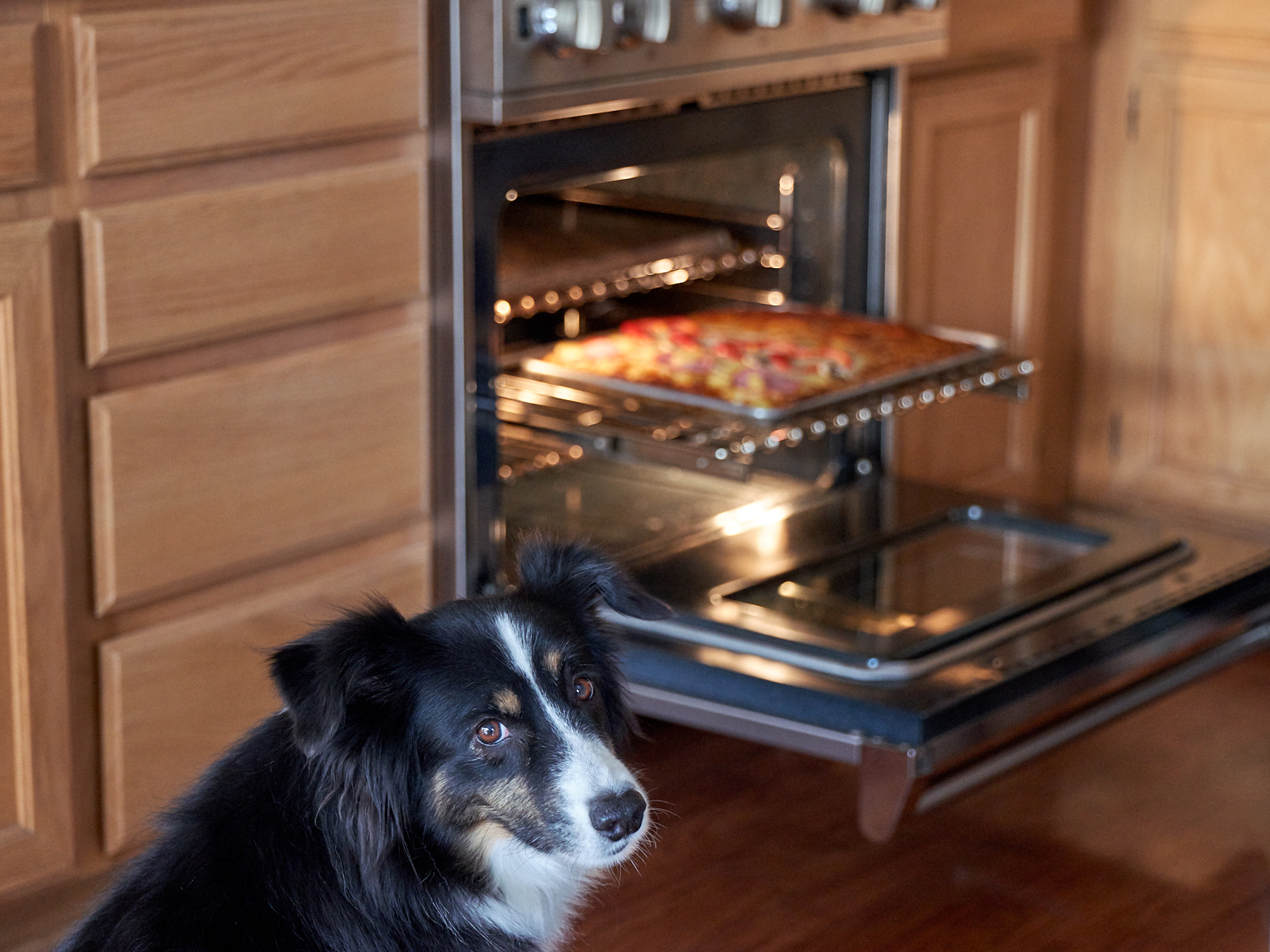 Riley wants to know why is it taking so long to get that out of the oven!