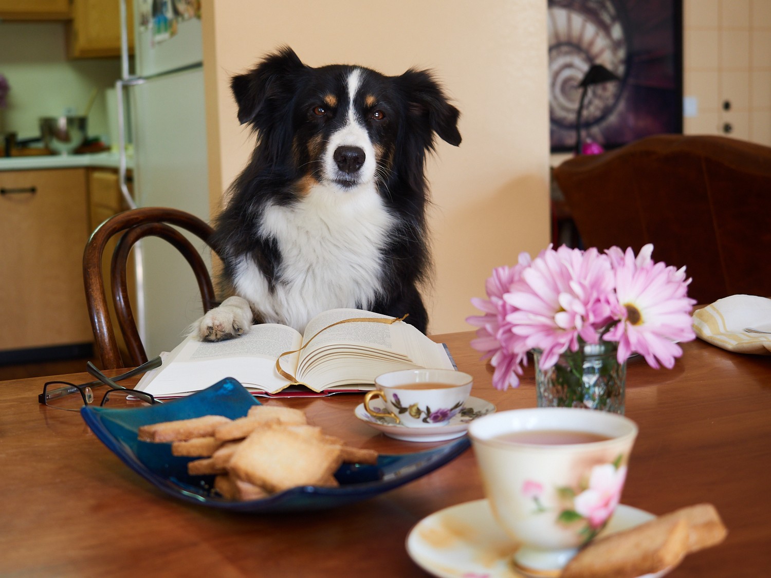 Riley loves his Sunday mornings with a good book, a cup of Earl Grey, and shortbread cookies.