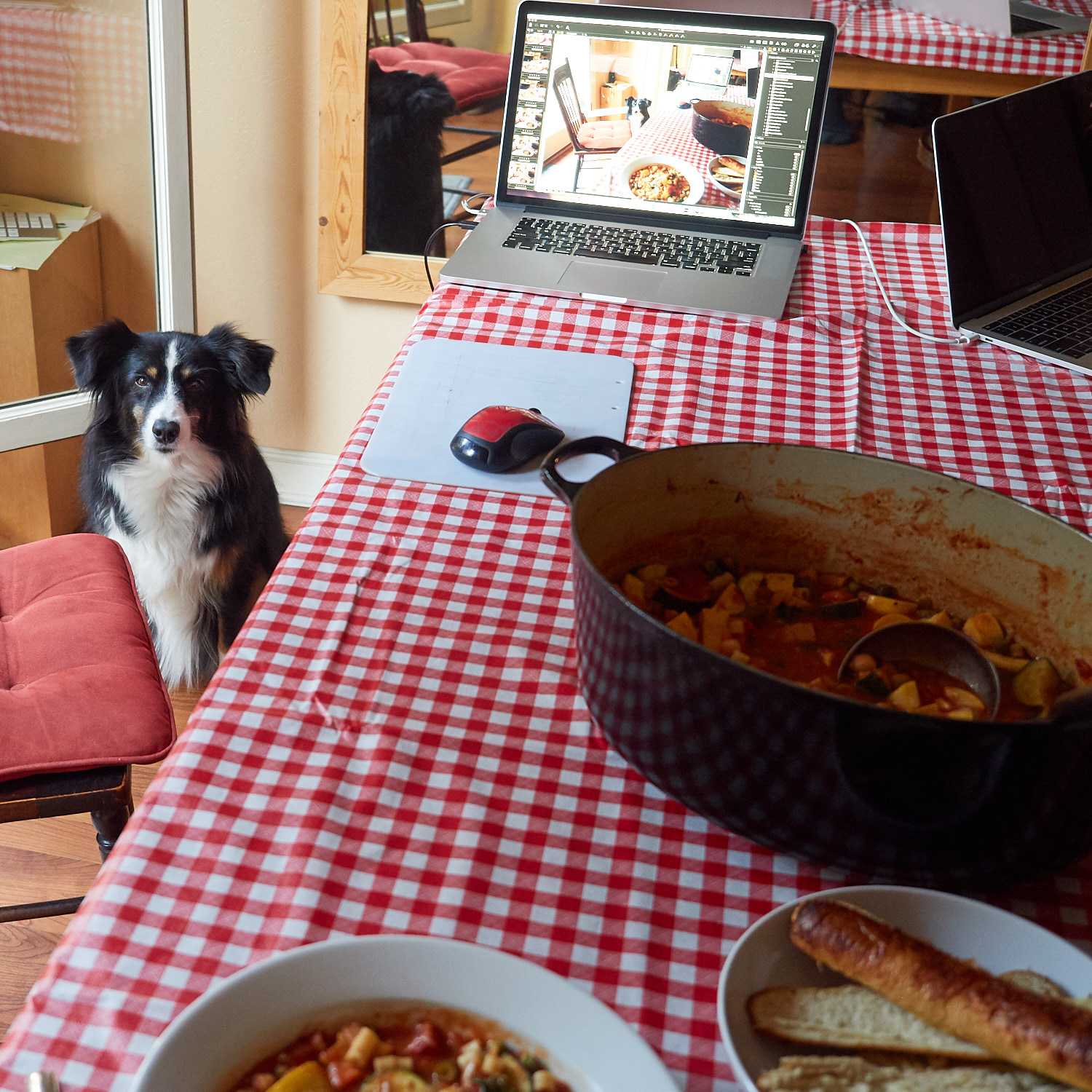 Riley was quite interested in Minestrone and waited close by… hoping for a taste.