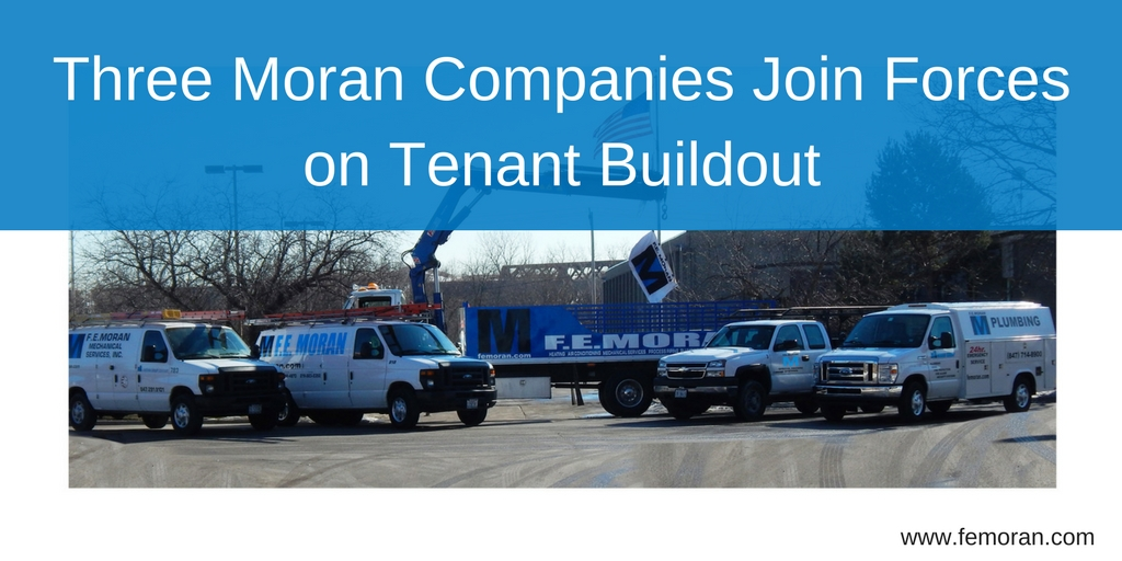 Three Moran Companies Join Forces on Tenant Buildout.jpg