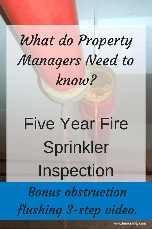 5-year+fire+sprinkler+inspection.jpg