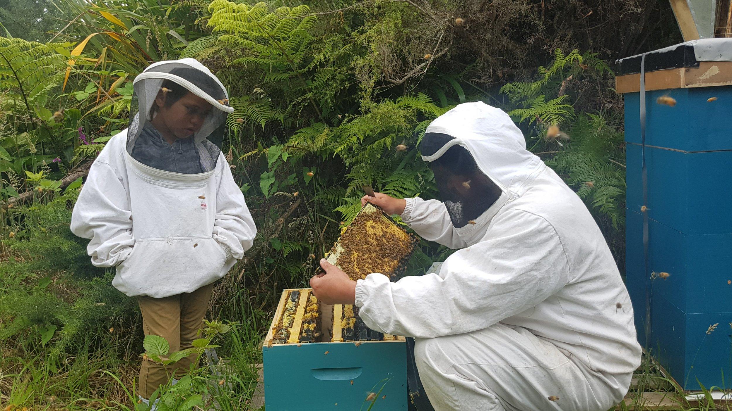 Beeple Honey Collective
