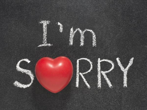 Say You're Sorry.jpg