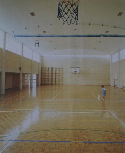 20140324043417221_website_sports-floors_MosaicparquetryinGymnasium20.jpg