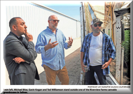 Expert works to help other growers - By: AMY WU THE CALIFORNIAN... Tod Williamson isn't used to the limelight especially when it comes to the press. <Read More>